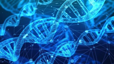 Op-ed I Article on international cooperation in the exchange of DNA data for forensic use I Florencia Daud, 2017 AsiaGlobal Fellow